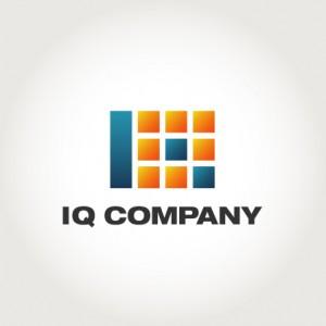 IQ COMPANY LOGO